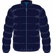 picture of bomber jacket  - winter jacket filled with real goose down - JPG