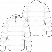 pic of bomber jacket  - winter jacket filled with real goose down - JPG