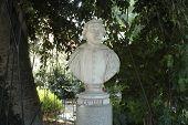 Постер, плакат: Bust of Mario Cutelli