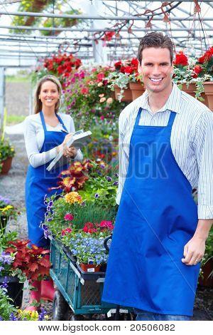 Young lächelnd Floristen arbeiten im Gewächshaus.