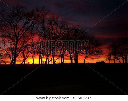 Pôr do sol sobre uma fazenda de KS