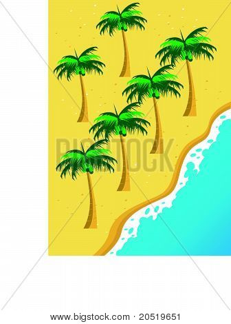 Beach and Coconut Palm Tree Vector Illustration