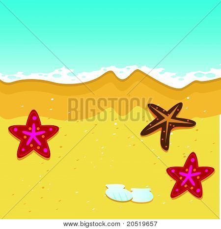 Beach and Starfish Vector Illustration