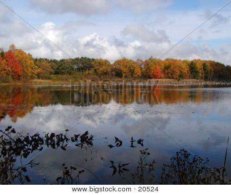 Autumn At The Audubon