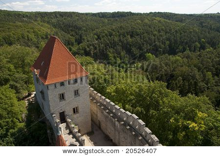 Castle Tower And Deep Forest