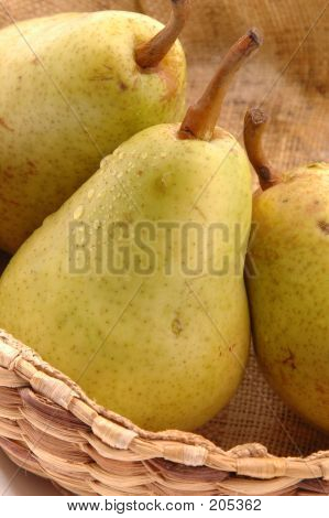 Bartlett Pears Vertical Close