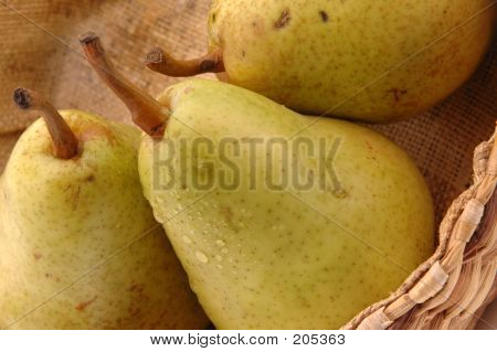 Bartlett Pears Horizontal