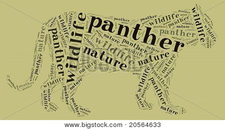 Wordcloud of panther