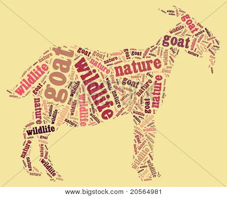 Wordcloud of goat