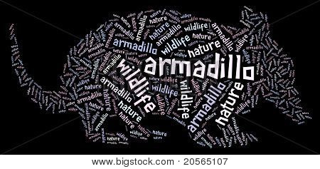 Wordcloud of armadillo