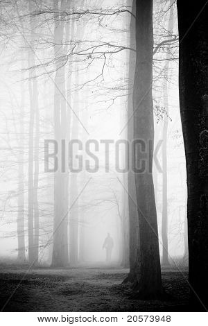 Woman In Mist Forest