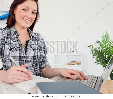 Young Gorgeous Red-haired Girl Relaxing With A Laptop While Studying
