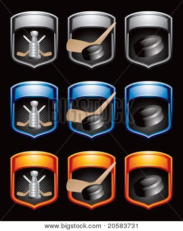 Hockey pucks, sticks, and trophies in multicolored banners