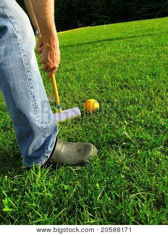Croquet Hitting Ball