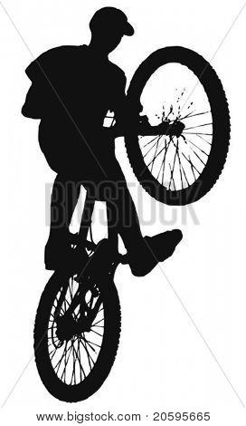 xstream 骑单车的矢量 库存矢量图和库存照片   big