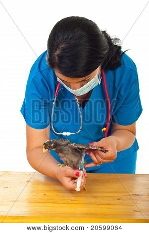 Veterinary Vaccine Chicken