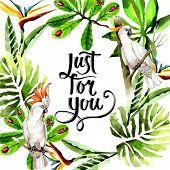 bird poster