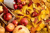 Autumn background from yellow leaves, apples, pumpkin. Fall season, eco food and harvest concept poster