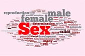 stock photo of porno  - Sex word cloud illustration - JPG