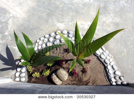 Garden Landcape