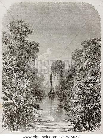Igarape-Miri channel vegetation old view, Brazil. Created by Riou, published on Le Tour du Monde, Paris, 1867
