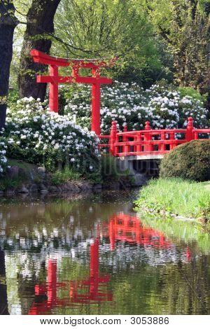 Oriental Bridge Reflections