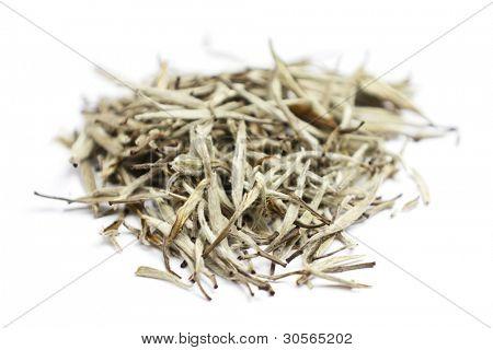 White tea. Closeup of chinese silver needle hair down white tea of premium luxury quality. Bai Hao Yinzhen tea on white background