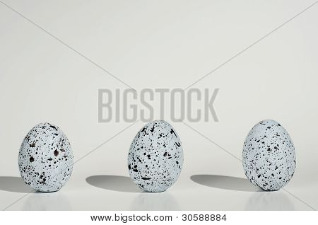 Three Spotted Eggs On White Background