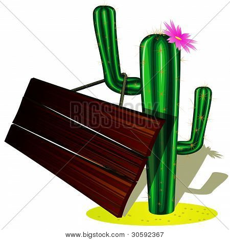 Cactus and billboard