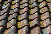Old Roof Tiles Background, Texture. Old Roof Tiles On The Roof Of An Old House poster