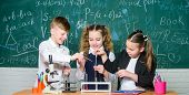 Group School Pupils Study Chemistry In School. Boy And Girls Enjoy Chemical Experiment. Organic Chem poster