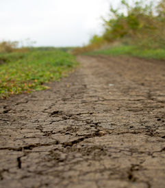 stock photo of dirt road  - Dry dirt road with an accent on cracks.
