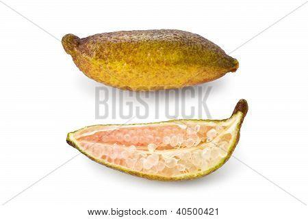 Finger Lime (citrus Australasica)