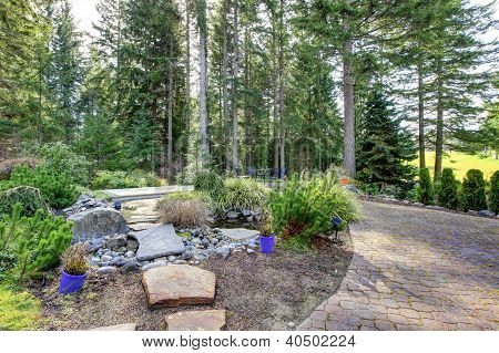 Backyard With Pine Trees And Stone Steps To Pond.