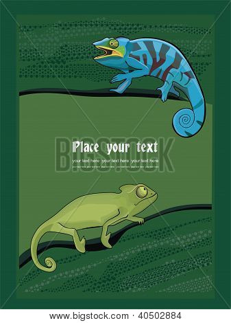 Background with chameleon