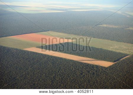 Deforestation In The Amazon