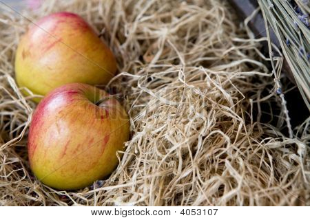 Two Apple In The Straw