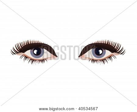 Female eyes vector illustration