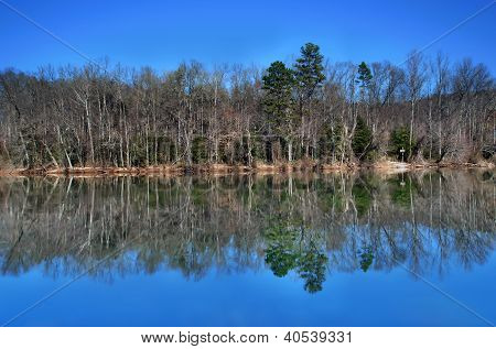 Lake Reflections