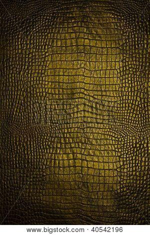 Oro de piel de serpiente