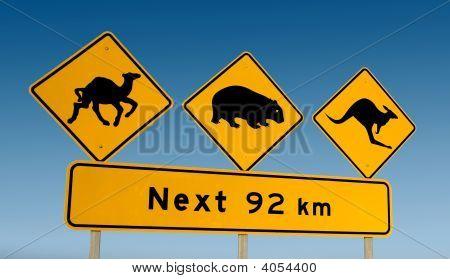 Kangaroo Wombat And Camel Warning Sign Australia