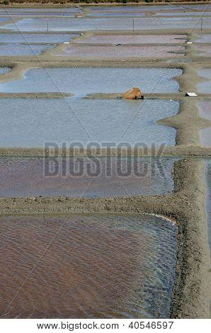 France, The Salt Evaporation Pond In Guerande