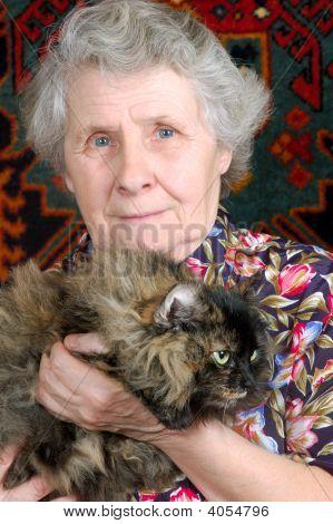 Großmutter sitzen mit Cat an ihren Händen