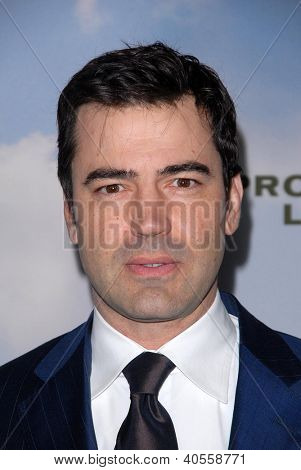 LOS ANGELES - DEC 6:  Ron Livingston arrives at the 'Promised Land' Premiere at Directors Guild of America on December 6, 2012 in Los Angeles, CA