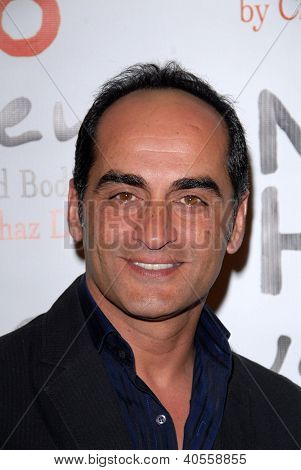 LOS ANGELES - DEC 12: Navid Negahban kommt an die NOH8 4th Anniversary Party im Avalon auf Decembe
