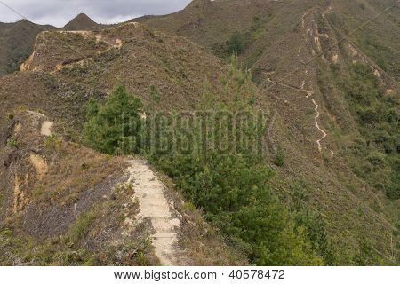 Hiking Path In The Andes Mountains