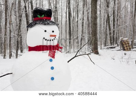 Snowman Standing In Fally Snow