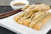 stock photo of lumpia  - Duck Spring Rolls  - JPG