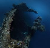 picture of bottomless  - Underwater shoot of USAT Liberty wreck - JPG