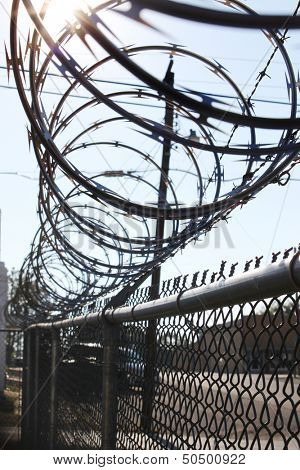 Sharp wire fence